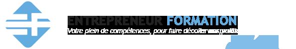 Entrepreneur Formation